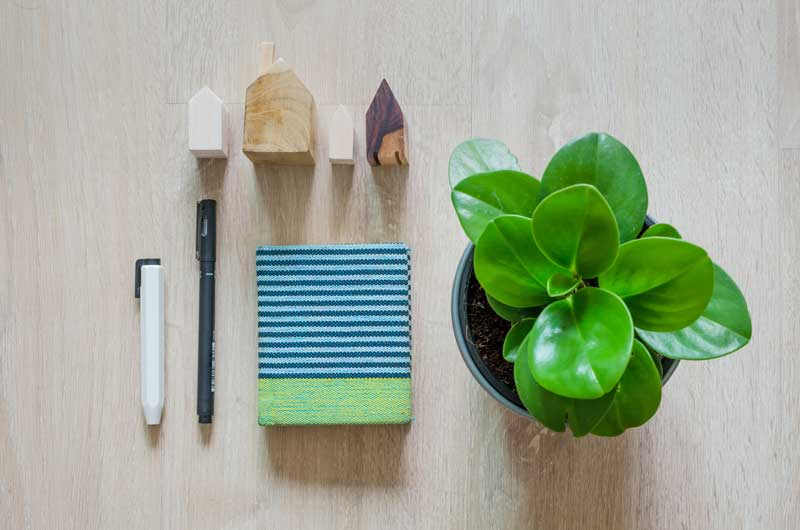 Must-Have Home Organization Tools