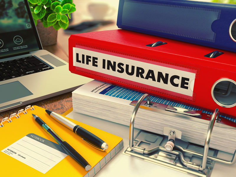 life insurance policy folder